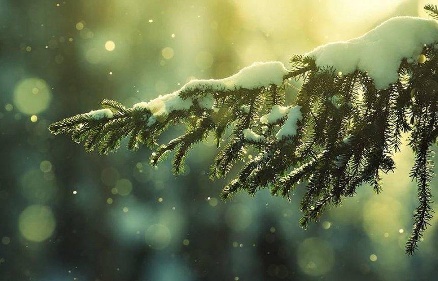 Оденься по погоде: прогноз в Киеве на 14-15 января