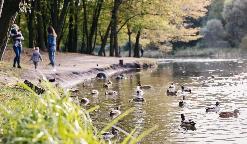 Нацпарку «Голосеевский» через суд вернули четыре гектара земель стоимостью 33млн грн