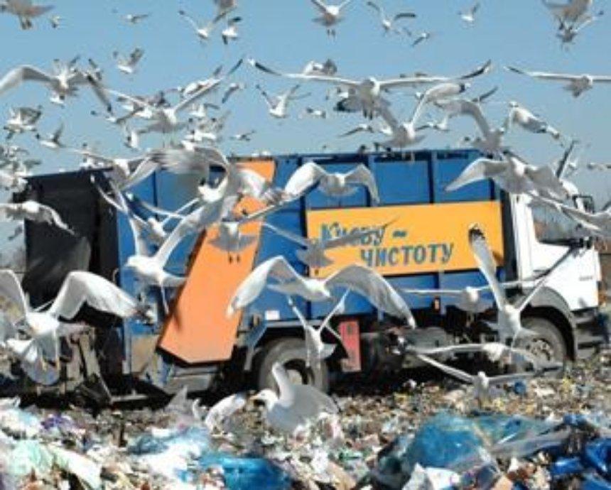 Киевская свалка снова угрожает городу экологической катастрофой