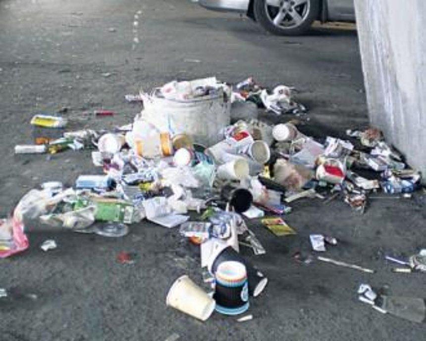 В Киеве Шулявка утопает в мусоре (фото)