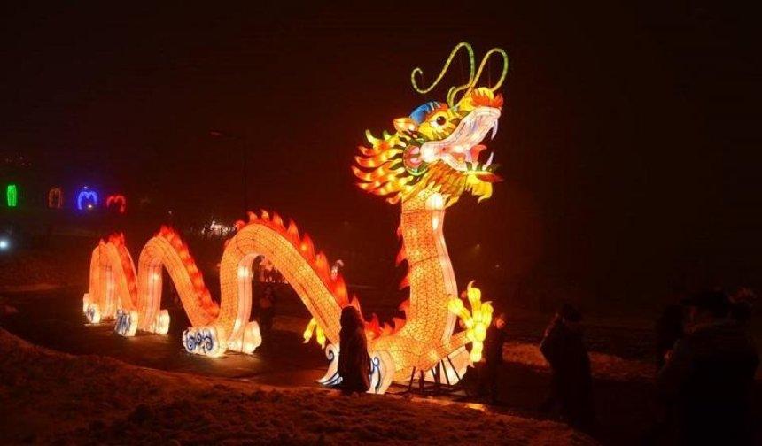 В Киеве можно увидеть гигантского дракона и светящихся фламинго (фото, видео)