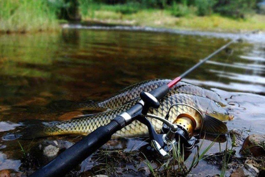 Рыбак рыбаку: советы, фишки, лайфхаки для лучшего клева
