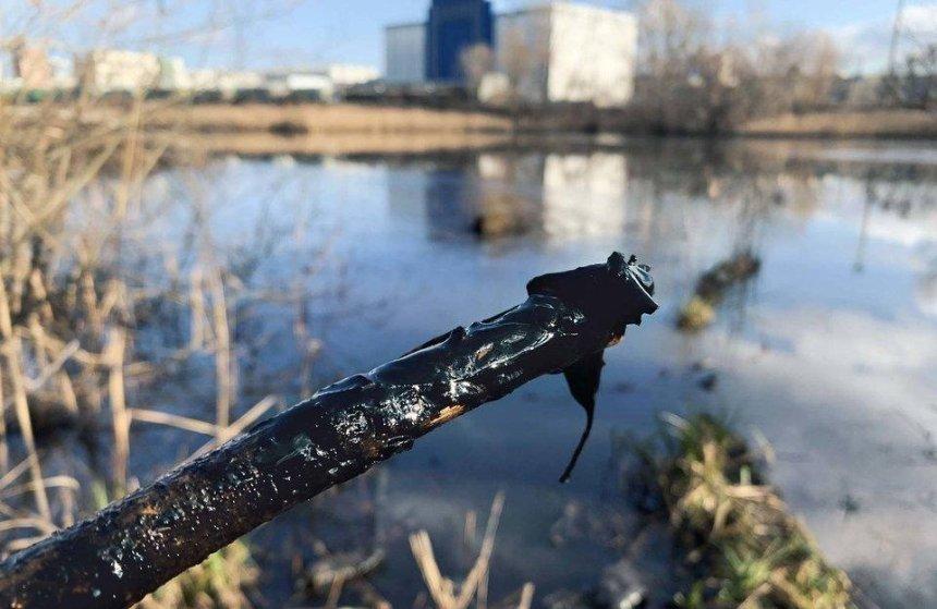 Озеро Луговое на Оболони отравляют мазутом, — активисты