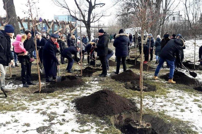 Возле Парковой аллеи в Киеве высадили яблоневый сад