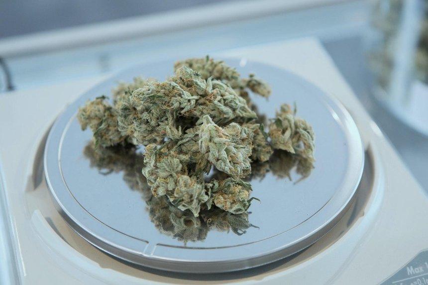 Австрийские врачи подтвердили эффективность марихуаны в терапии COVID-19
