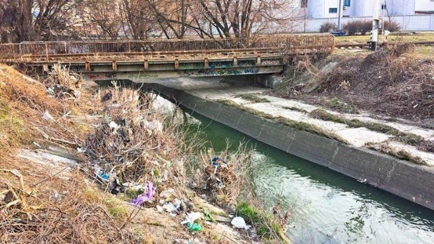 Либідь кличе: киян запрошують на прибирання берегів річки