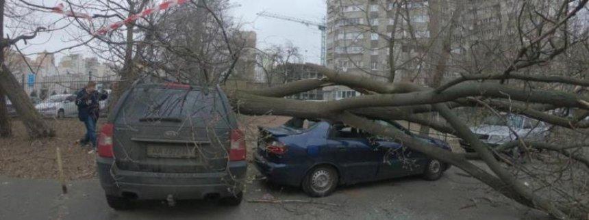 Что натворил ураган в столице: поломанные деревья и не только, есть пострадавшие