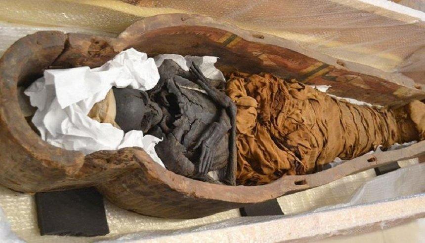 В столице ищут клинику с аппаратом КТ для египетской мумии