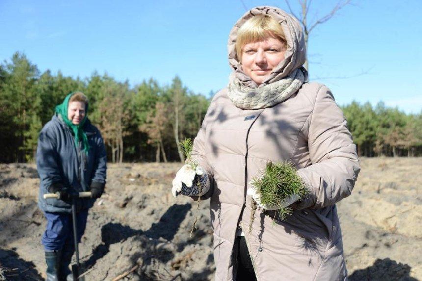Новый экорекорд Украины: под Киевом высадили 100 тысяч деревьев