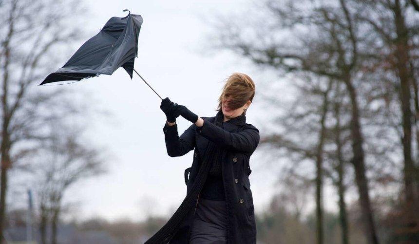 Ветер ипотепление: какой будет погода вКиеве навыходных