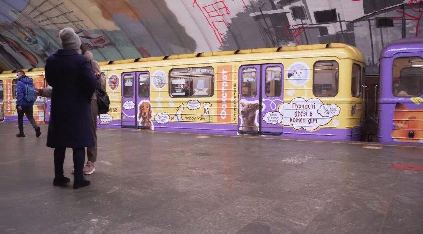 «Ищи своего в приютах»: в киевском метро ездит поезд с фото бездомных животных