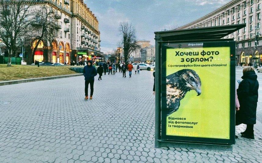 В украинских городах появились ситилайты для фото с животными: что это значит