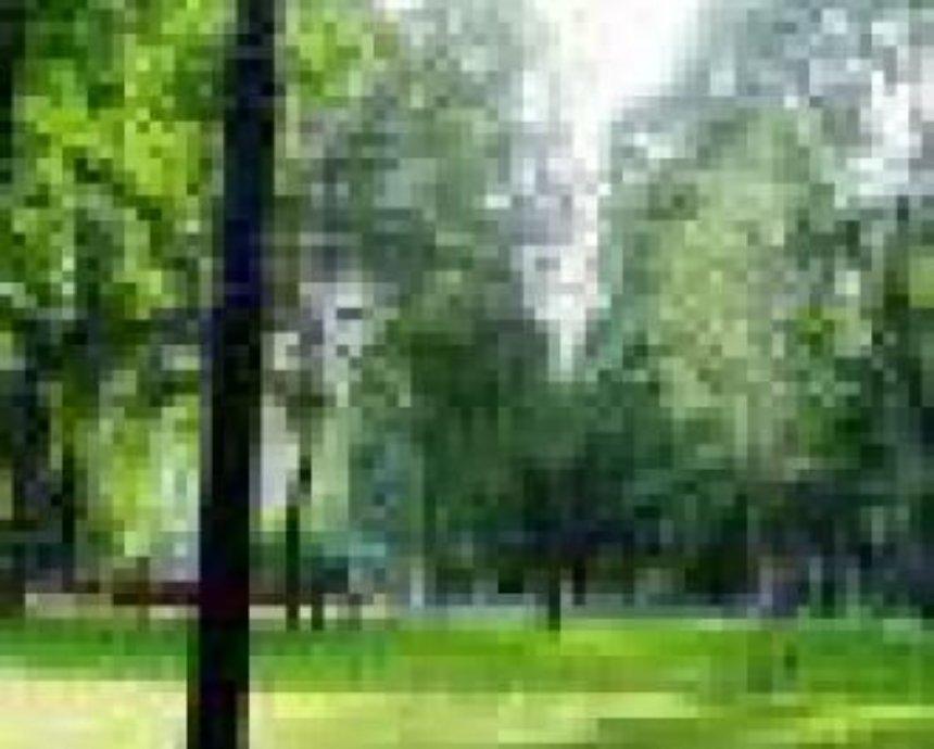 Парк Малышко восстановят ко Дню Киева