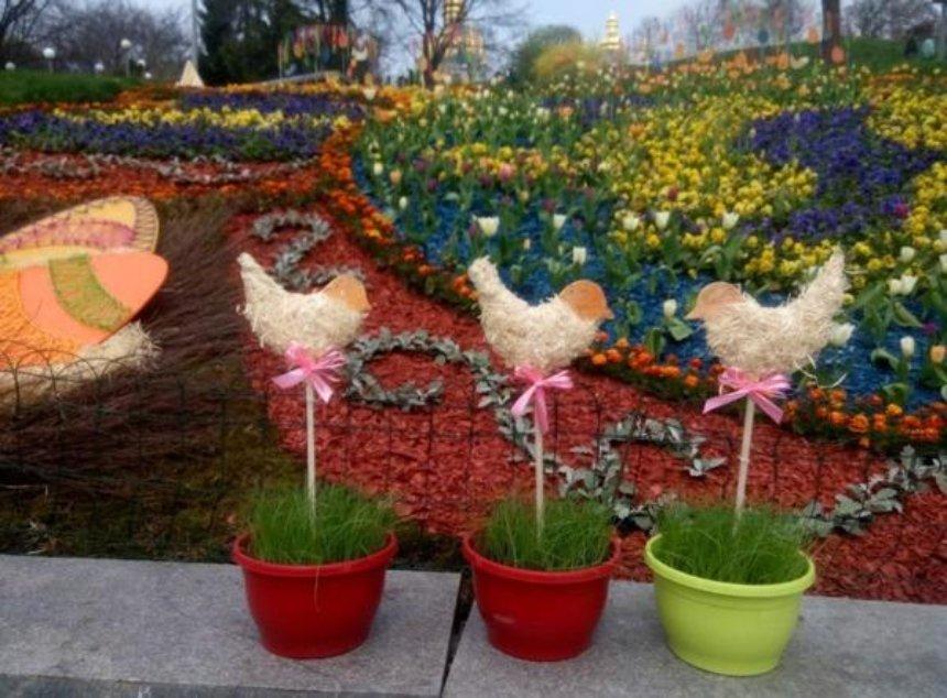 Тюльпаны на Певческом поле: киевлян приглашают на уникальную выставку (фото)