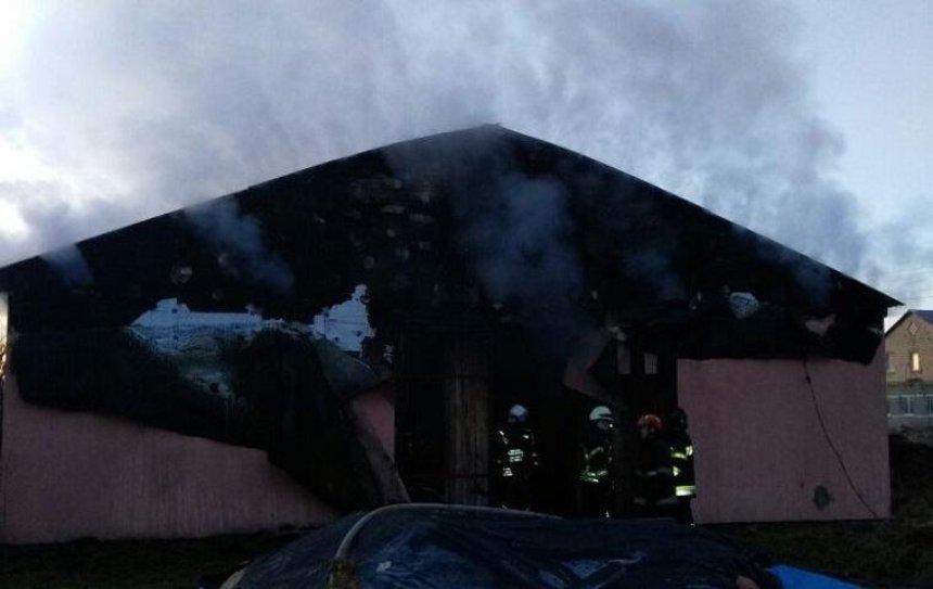 Под Киевом сгорела конюшня (фото)