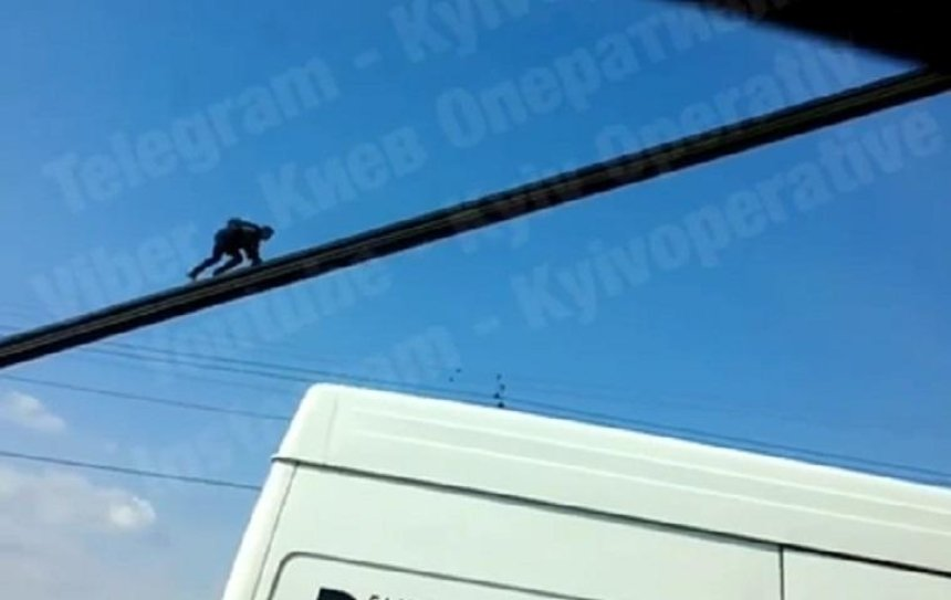 На Северном мосту заметили «обезьяну» (видео)