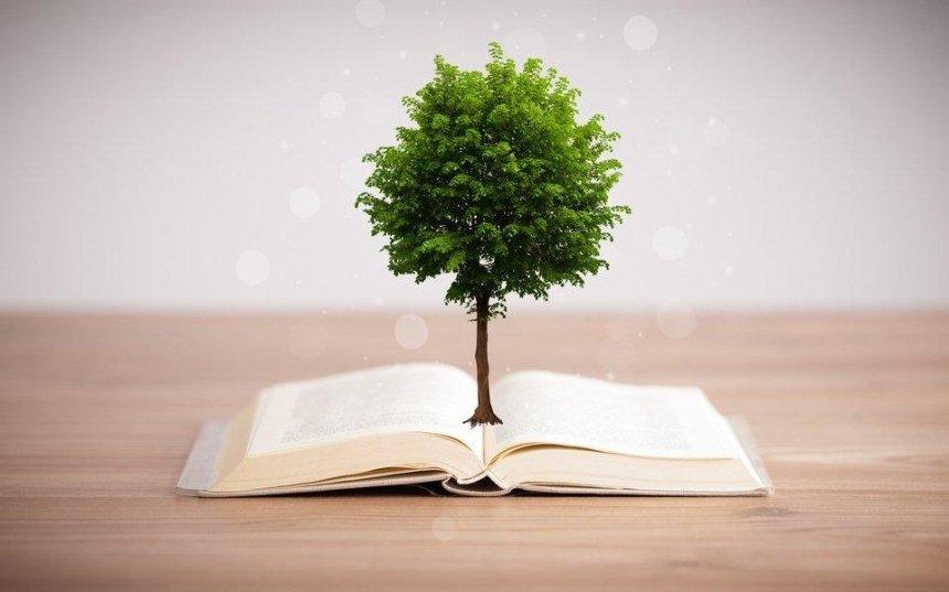 За кожну придбану на «Книжковому Арсеналі» книгу висадять дерево