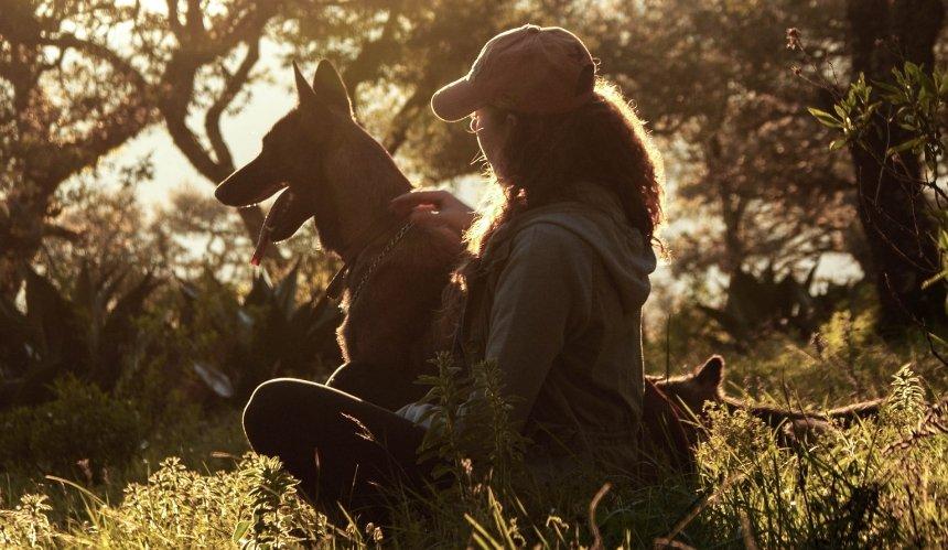 «Либо спасай, либо сиди и плачь»: история волонтерки Ольги Куц и сообщества «Обними собаку»