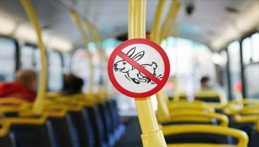 Встоличном транспорте объявили охоту на«зайцев»