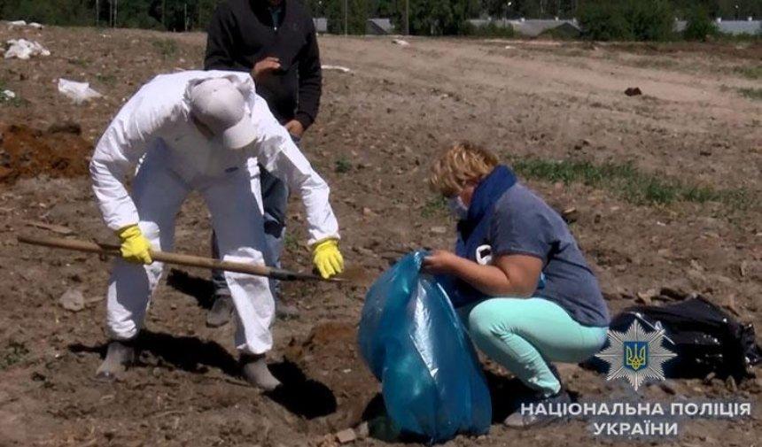 Директора птицефабрики задержали за организацию куриных могильников