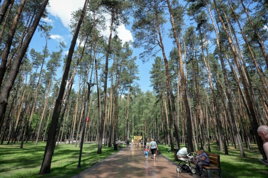 Первую часть парка «Совки» открыли после реконструкции: как он выглядит