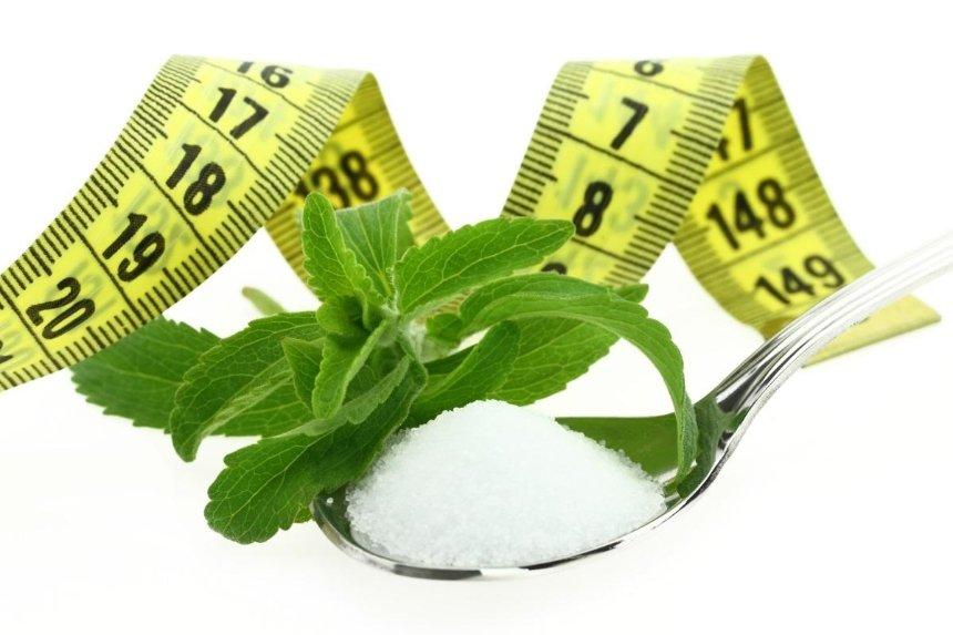 Натуральный подсластитель стевия для похудения: польза или вред?