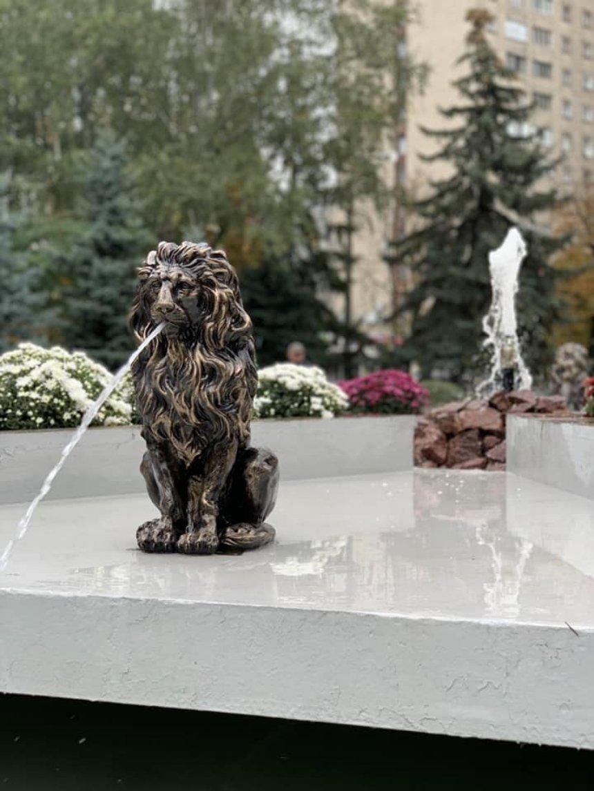 Фото: facebook.com/Volodymyr.Jr.Bondarenko