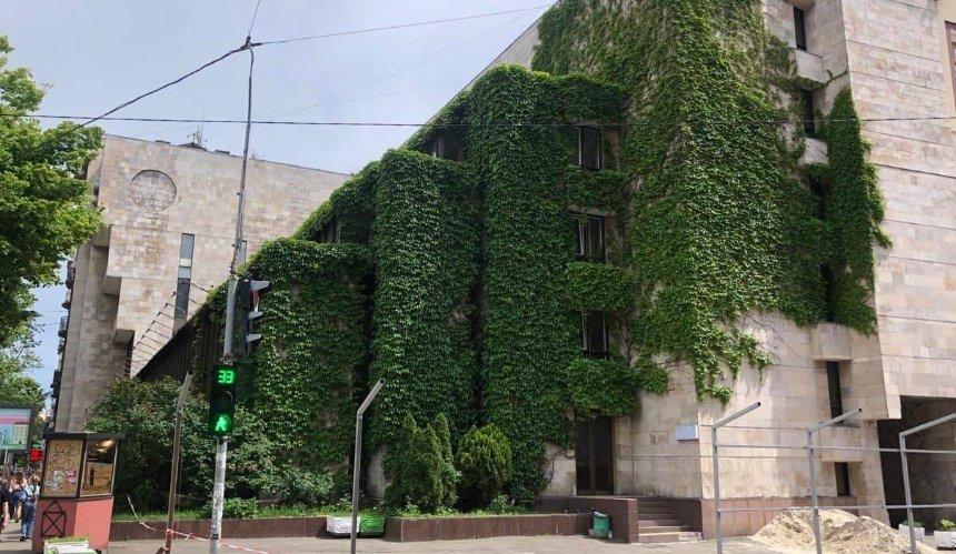 С модернистского здания на Сечевых Стрельцов срезали виноград