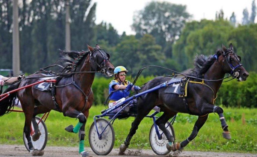 Киевлян приглашают  посмотреть конное шоу