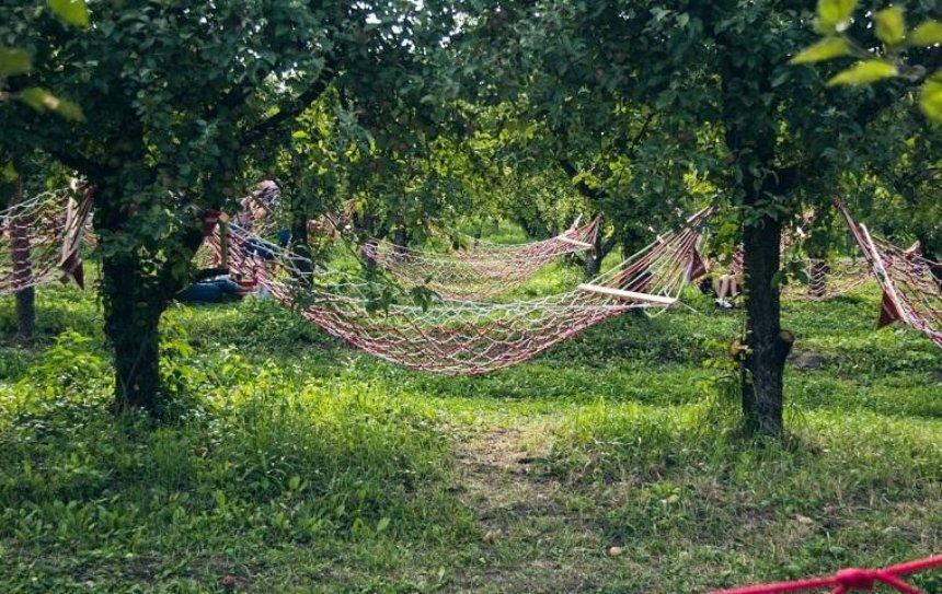 В Киеве открылся «Сад гамаков» (фото)