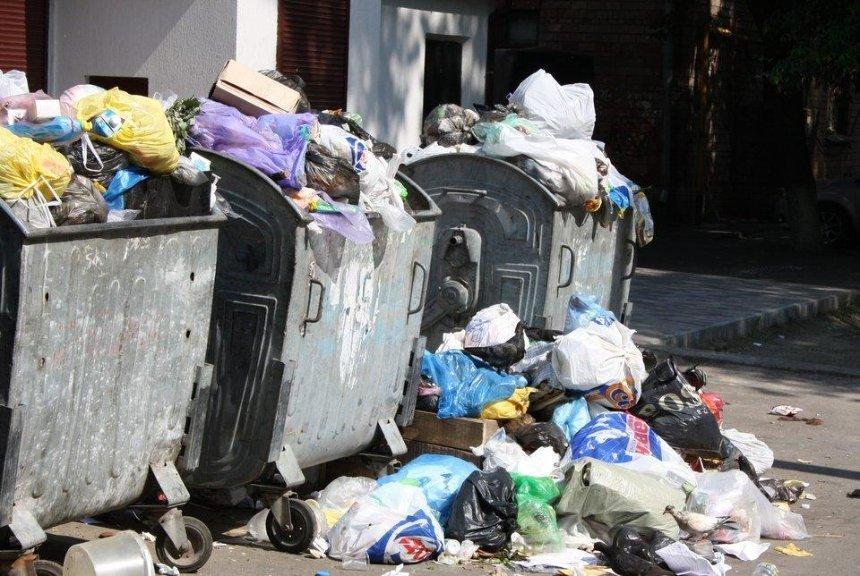 От повторения Львовской катастрофы Киев может спасти лишь мусороперерабатывающий завод европейского уровня — экологи