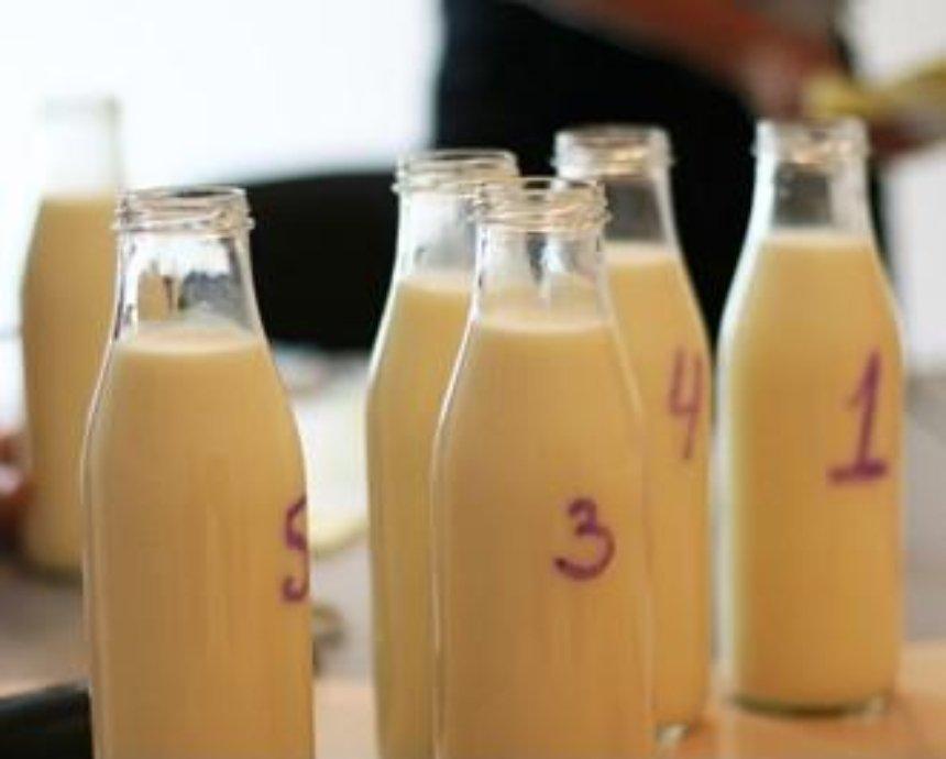На лугу пасутся ко: дегустируем молоко от 6 производителей