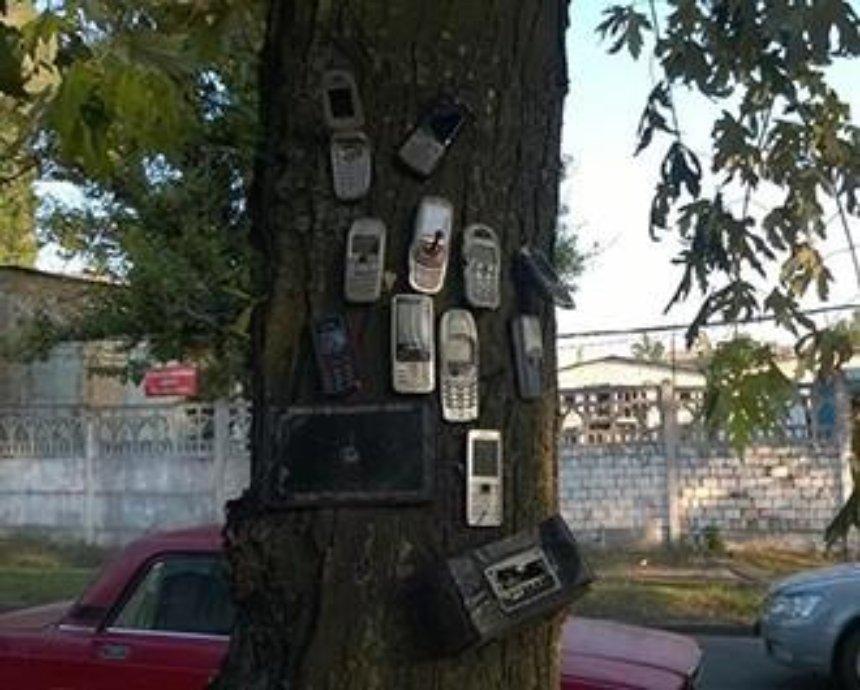 """В столице растет дерево, """"украшенное"""" мобильными телефонами (фото)"""