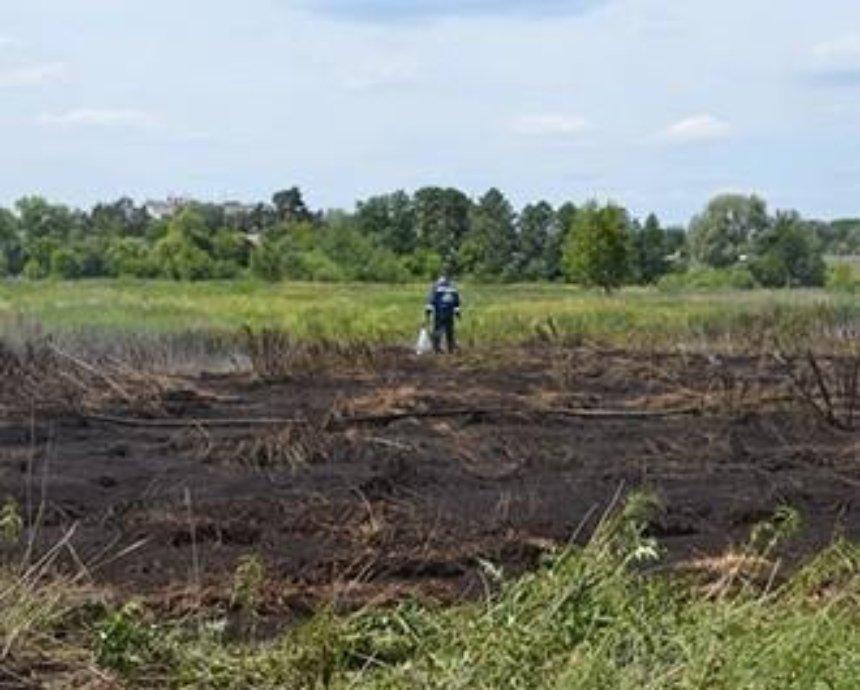 Киевлян успокоили: пожары торфяников не загрязняют воздух в столице