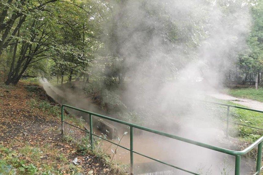 «Рыба уже варится»: в Голосеевском парке произошел слив горячей воды в Ореховатские пруды