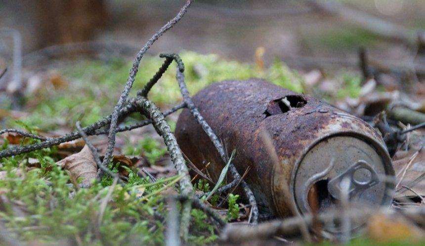 Штрафы за выброс мусора в лесу могут поднять в 10 раз