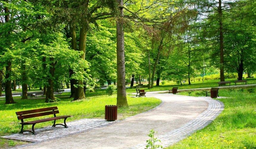 ВОболонском районе появятся новые зеленые зоны: где именно