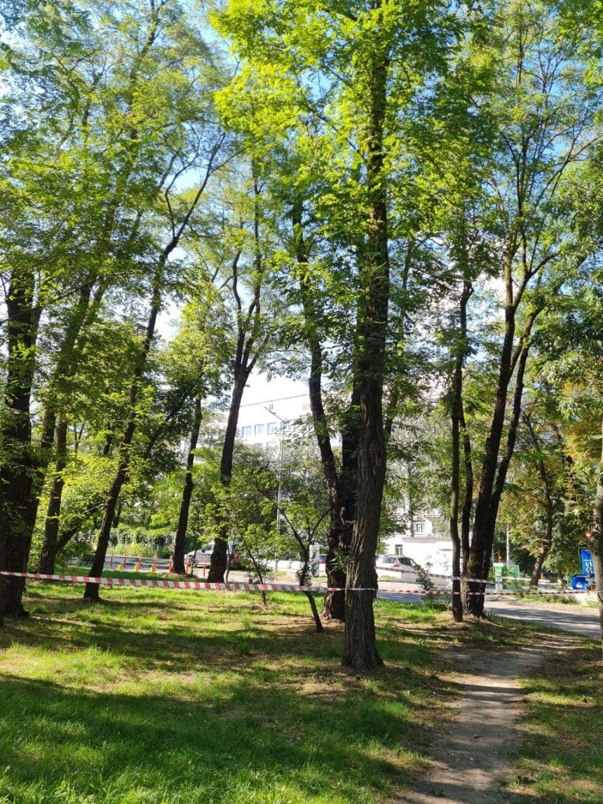 Фото: Сырецкий парк