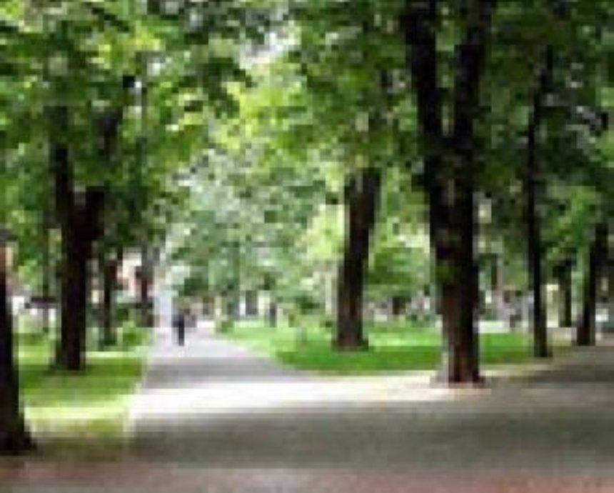 В Голосеевском районе сделают зону отдыха