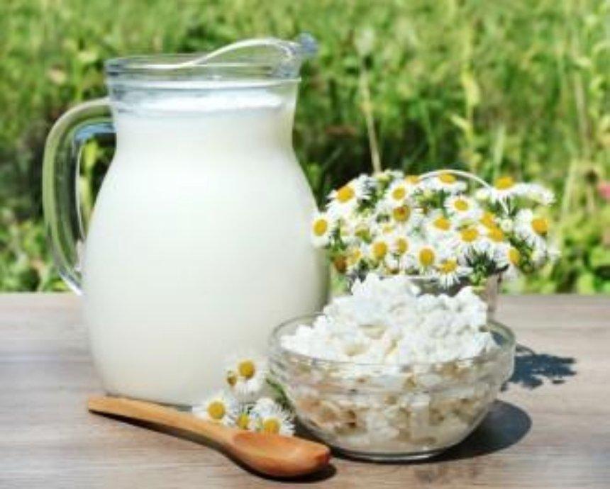 В воскресенье на Певчем поле будут дегустировать молоко и сыр