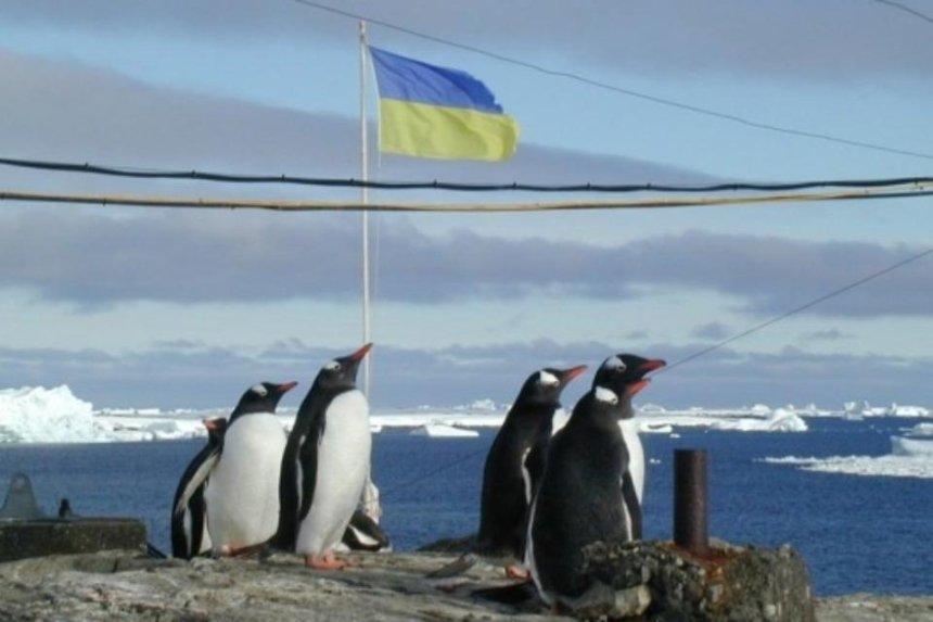 Год посреди снегов: в Украине ищут полярников для экспедиции в Антарктиду