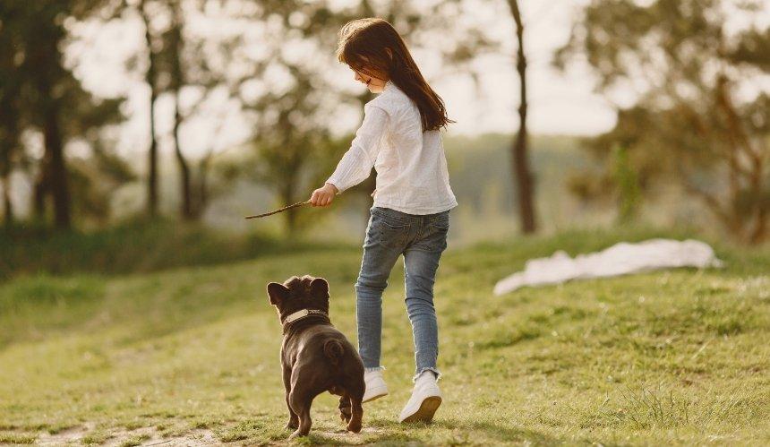 ВКиеве обустроят новую площадку для выгула собак: где именно