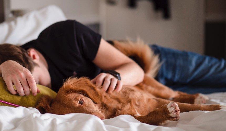 Исследователи доказали, что сон навыходных снижает риск депрессии