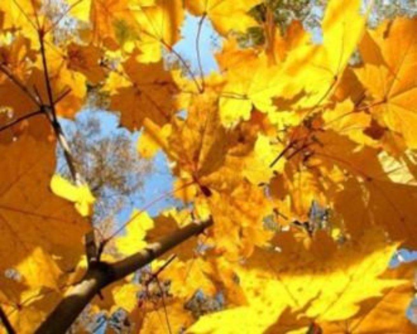 Тепло прийдет в Киев после 15 октября