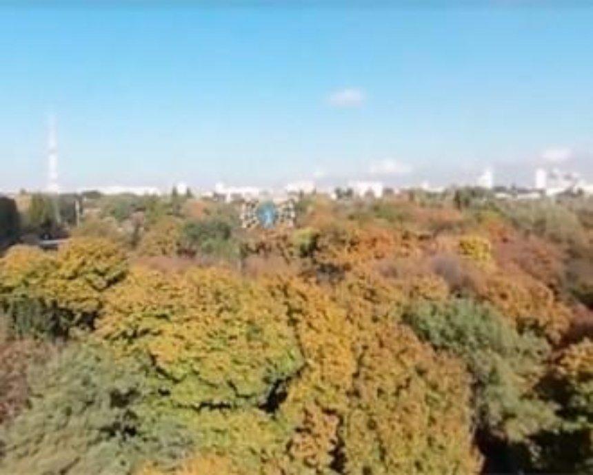 Под углом 360 градусов: киевский зоопарк сняли с высоты