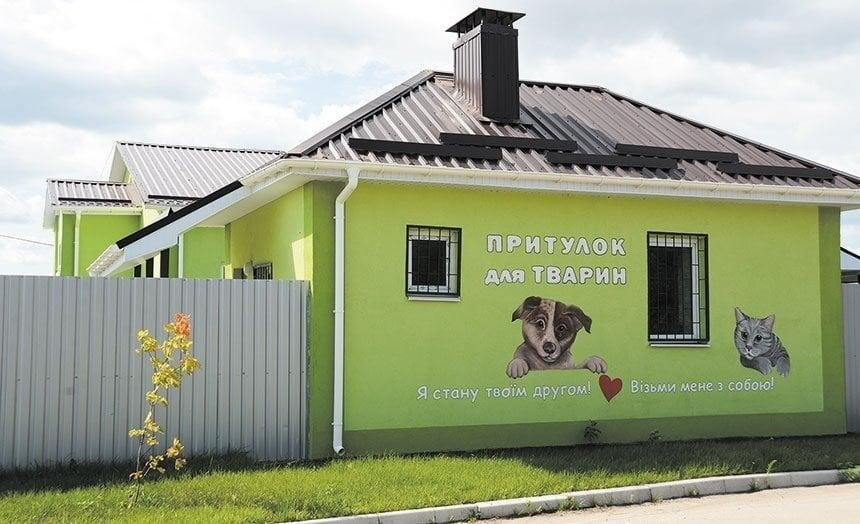 Под Киевом заработал Центр стерилизации и адопции животных