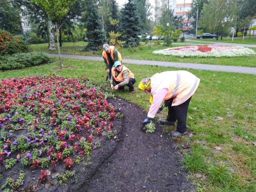 Тоннель любви, магнолии и черемуха: как озеленили Днепровский район Киева