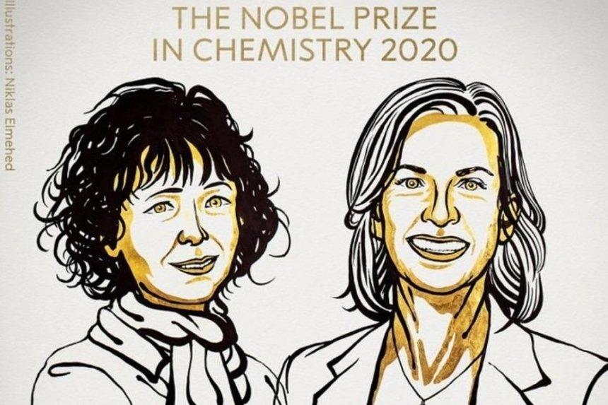 Нобелевскую премию похимии вручили заразработку метода редактирования генома
