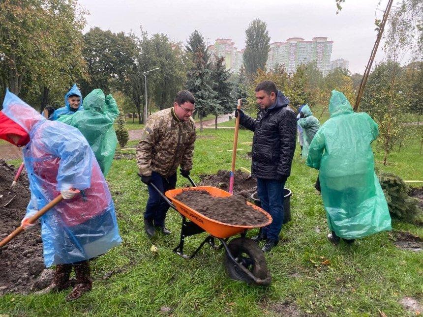 Тюльпановые деревья, ели и березы: в парке «Отрадный» посадили молодые деревья