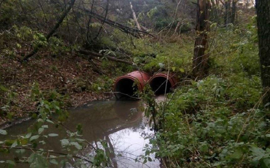 Голосіївський парк потерпає від нелегальної каналізації (фото)